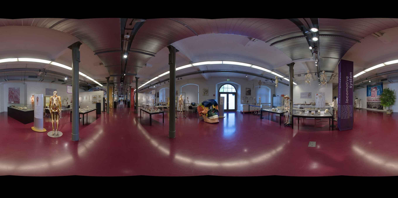 Prezentacja panoramiczna dla obiektu Plastinarium w Guben