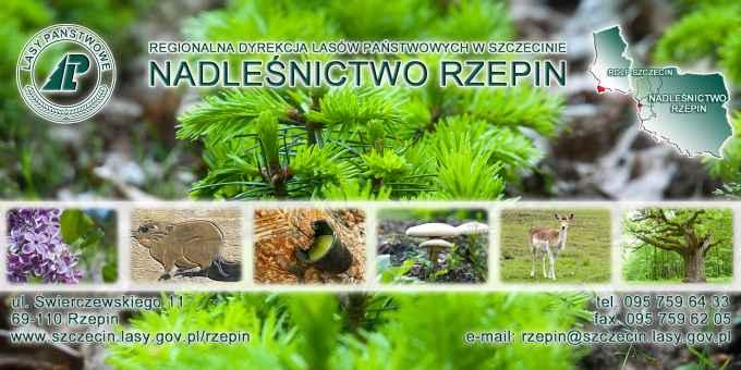 Prezentacja panoramiczna dla obiektu Nadleśnictwo Rzepin